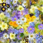Spring Time – Liver Time